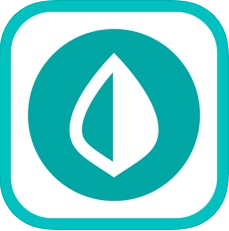 Mint app - cost to develop an app like mint